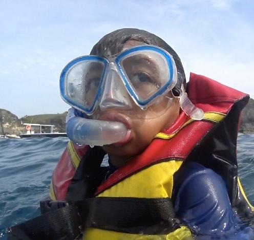 Snorkeling di Manta Bay