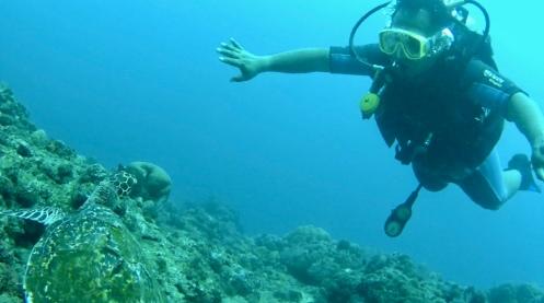 Diving di Amed