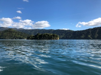Sailing acrros Queen Charlotte Sound New Zealand