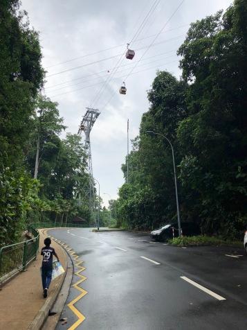 Area sekitar pintu masuk lobi Siloso Beach Resort, serasa di Puncak kan ? :D