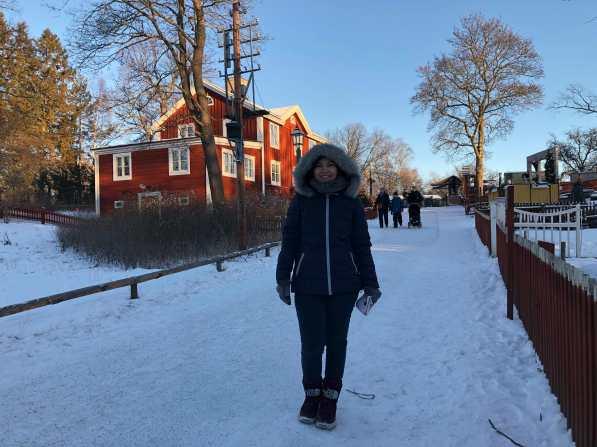 Museum open air Skansen